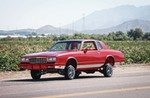 Production (Stock) Chevrolet Monte Carlo, Chevrolet Monte Carlo - 1984 Chevrolet Monte Carlo - Monte-Licious Source: <a href='https://www.lowrider.com/rides/cars/1505-1984-chevrolet-monte-carlo/' target='_blank'>https://www.lowrider.com/...</a>