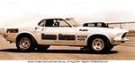 Racing Ford Mustang, 1969 -Ford - Mustang - 2252