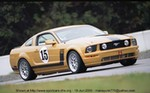 Racing Ford Mustang, Ford - Mustang - 14418