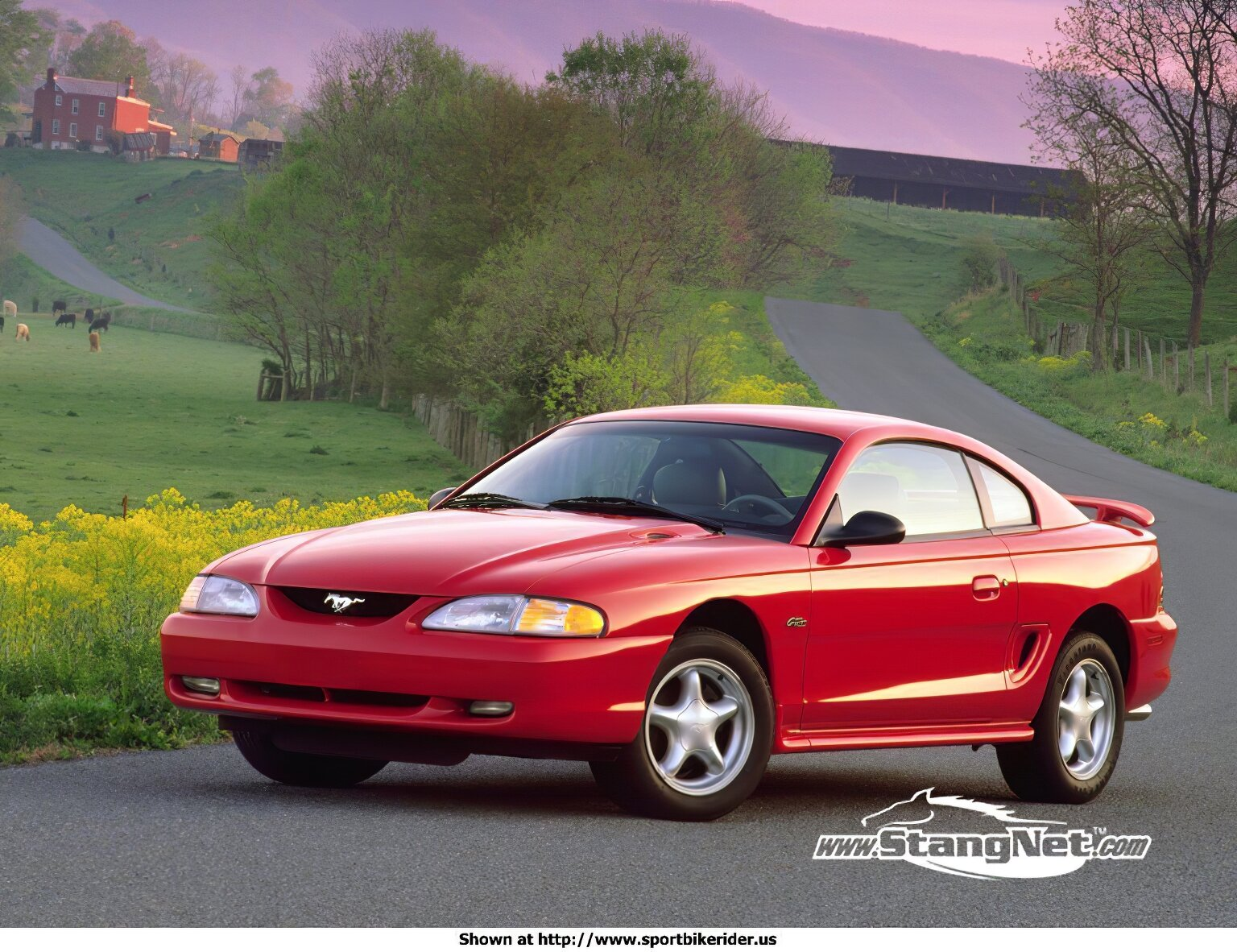 Ford Mustang - ID: 1619