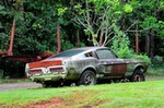 Production (Stock) Shelby GT500, Shelby GT500 - 1967 Ford Mustang Shelby GT500 427 Yard Rust USA -13 ... Source: <a href='https://www.wallpaperup.com/942530/1967_Ford_Mustang_Shelby_GT500_427_Yard_Rust_USA_-13.html' target='_blank'>https://www.wallpaperup.com/...</a>