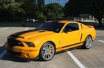 Production (Stock) Shelby GT500, Shelby GT500 - 2008 Ford Mustang Shelby GT500 Super Snake,V8... » USA ... Source: <a href='http://american-classicmusclecars.com/post/123874302516/2008-ford-mustang-shelby-gt500-super-snakev8' target='_blank'>http://american-classicmusclecars.com/...</a>